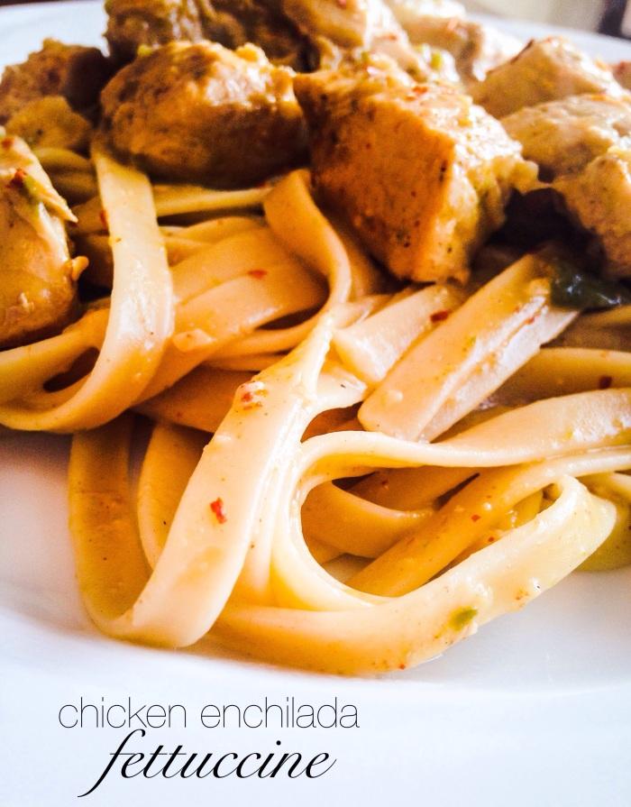 chicken enchilada fettucine 2